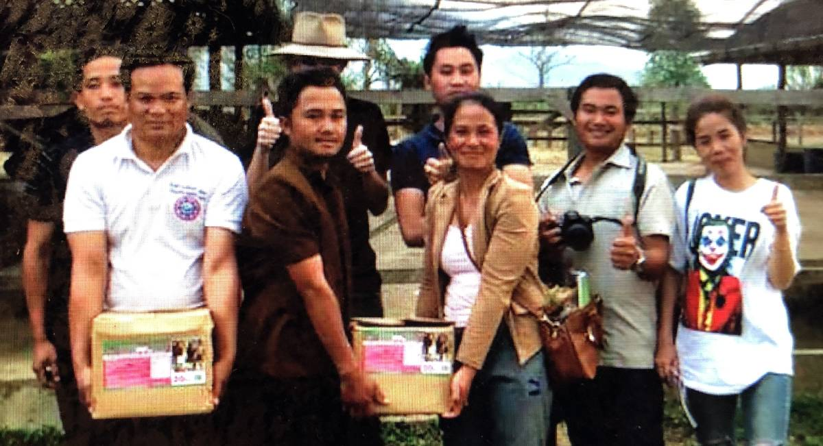 Research carried out at the Laos Buffalo Dairy near Luang Prabang reveals a win-win for the livestock industry.